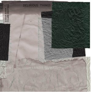 Aidan Baker and Claire Brentnall - Delirious Things