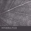 Moljebka Pvlse - In Love and Death, You Are Alone