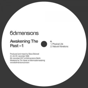 Steve Bicknell - Awakening The Past